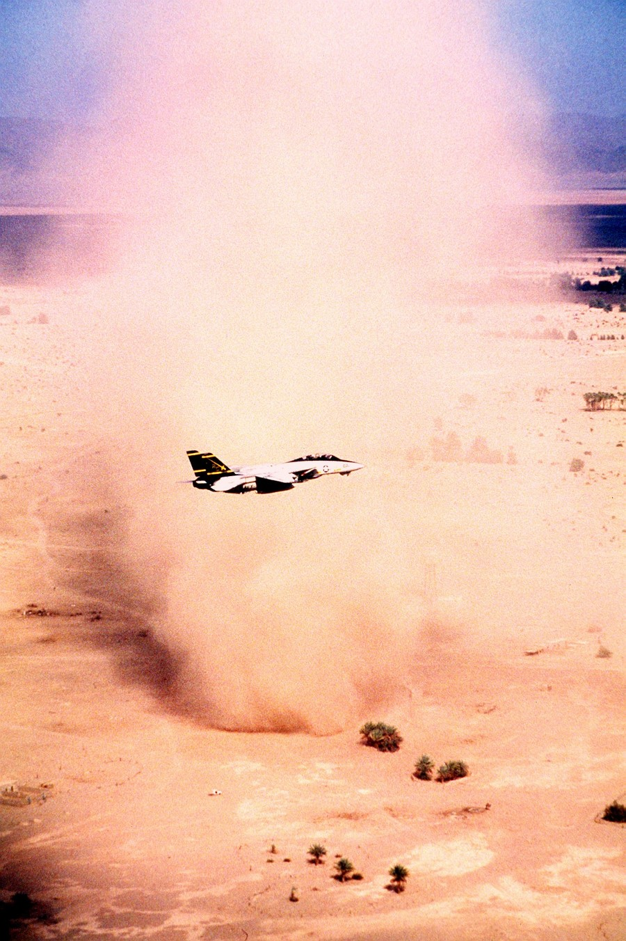 5. A United States Navy F-14A Tomcat